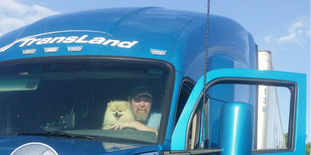 3 Types of Dogs That Are Best for Truck Drivers
